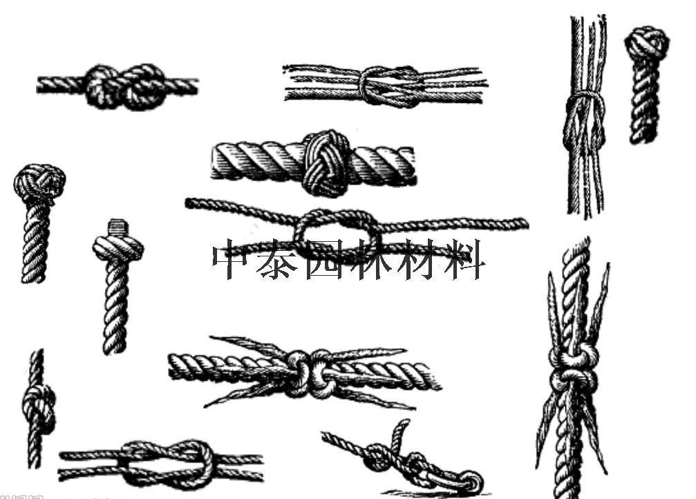 麻绳简笔画图片